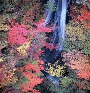 2010_1130_013914-4京都 126.JPG