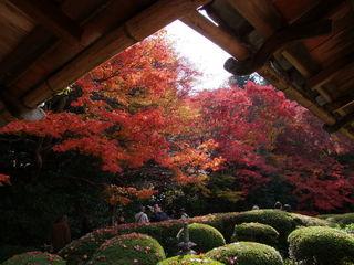 2010_1127_224445-NO1京都 056.JPG