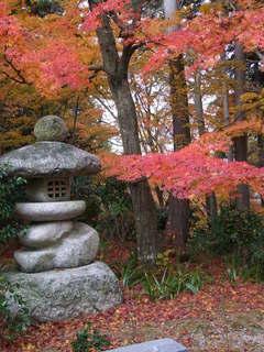 2010_1130_012508-4京都 088.JPG