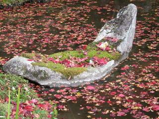 2010_1130_014210-4京都 135.JPG