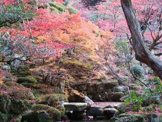 2010_1130_014801-4京都 149.JPG