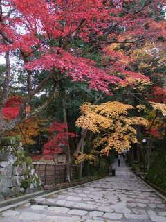 2010_1130_025131-4京都 173.JPG